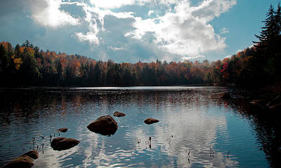 Fir Trees Photograph - Cary Lake by David Patterson