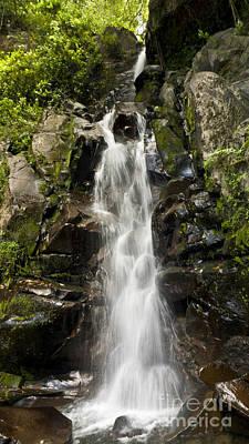 Cascada Photograph - Cascada San Ramon by Heiko Koehrer-Wagner