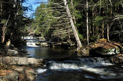 Art Print featuring the photograph Cascade In The Catskills by Diane Lent