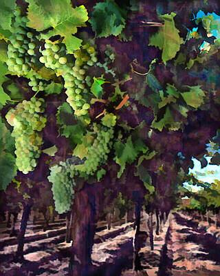 Sparkling Wines Digital Art - Cascading Grapes by Elaine Plesser