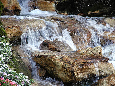 Cascading Water Art Print by Barbara Middleton