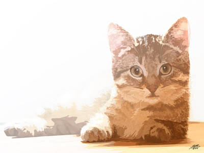 Digital Art - Cat Basking In Sunshine by Steve Huang