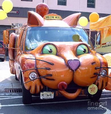Photograph - Cat Car Meow by David Karasow