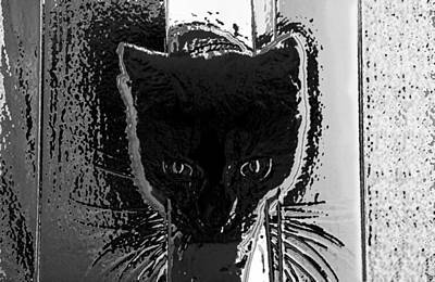 Playful Digital Art - Cat Coming In by David Lee Thompson