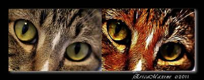 Cat Eyes Art Print by EricaMaxine  Price