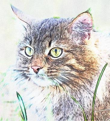 House Pet Digital Art - Cat Eyes by Yury Malkov