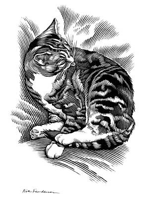 Linocut Photograph - Cat Grooming Its Fur, Artwork by Bill Sanderson