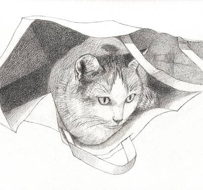 Cat In A Bag Art Print