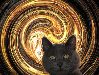 Cat In Spiral Of Life Original by Zsuzsa Balla