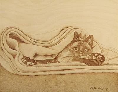 Pyrography Drawing - Cat In The Folds by Fay De Jong