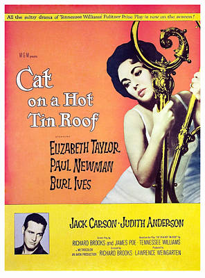 Cat On A Hot Tin Roof, Elizabeth Art Print by Everett