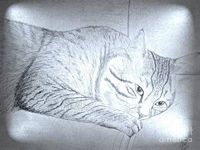 Wall Art - Mixed Media - Cat On Couch 2 by Cybele Chaves