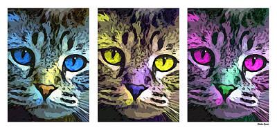 Coon Cat Digital Art - Cat by Stephen Younts