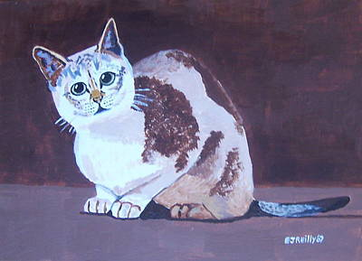 Cat With Brown Background Art Print by Eamon Reilly