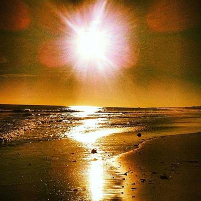 Catching The Last Bit Of The Suns Art Print