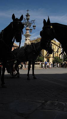 Photograph - Cathedral Horses by Colleen Rugg
