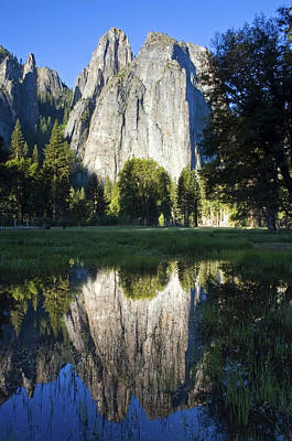 Cathedral Rock Photograph - Cathedral Rocks Are Reflected In A Pool Of Water In Yosemite National Park, Ca by Rachid Dahnoun