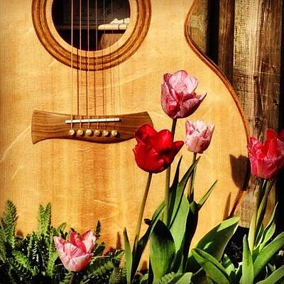 Guitar Wall Art - Photograph - Catherwood Guitar Beautiful To Listen by Lisa Catherwood