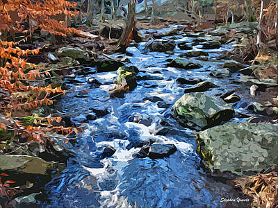 Catoctin Stream Art Print by Stephen Younts
