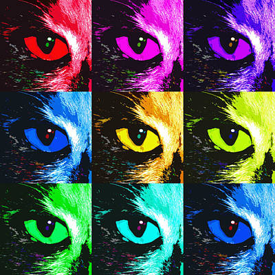 Kitten Digital Art - Cat's Eye In Hues by Betsy Knapp