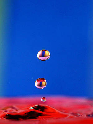 Photograph - Cats Eye Water Drops by Paul Ge