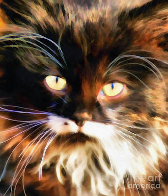 Cats Eyes Art Print by Clare VanderVeen
