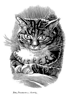 Cat's Whiskers, Conceptual Artwork Art Print by Bill Sanderson