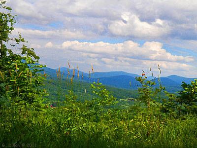 Catskill Mountain Hillside Art Print