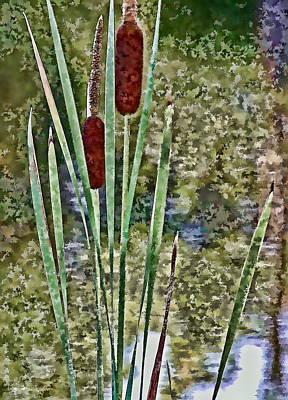 Digitalized Photograph - Cattails Along The Pond by Don Schwartz