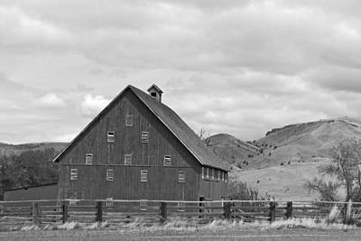 Photograph - Cattle Barn by Sara Stevenson