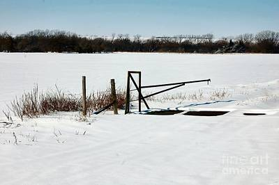 Photograph - Cattle Guard by Anjanette Douglas