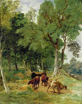 Cattle On A Devonshire Art Print by T S Cooper and F R Lee