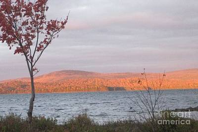 Photograph - Caucomgomoc Lake Sunrise In Maine by Stella Sherman
