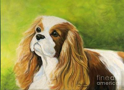 Cavalier King Charles Spaniel  Art Print by Charlotte Yealey