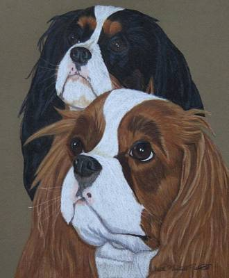 Drawing - Cavalier King Charles Spaniels by Anita Putman