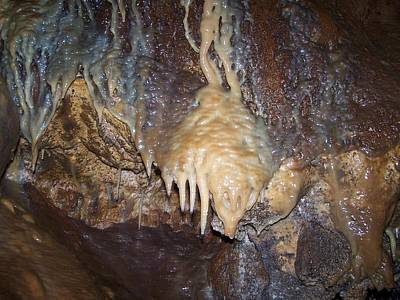 Photograph - Cave Formations 31 by Ernie Echols