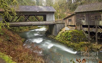 Rainy Day Photograph - Cedar Creek by Idaho Scenic Images Linda Lantzy