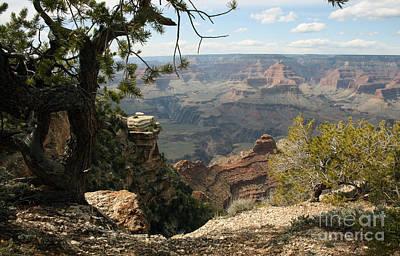 South Kaibab Trail Photograph - Cedar Ridge - Grand Canyon by Juan Romagosa