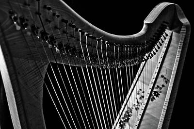 Photograph - Celtic Harp One by Sam Hymas