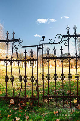 Metalwork Photograph - Cemetery Gates by HD Connelly
