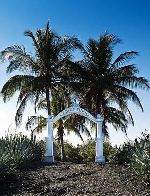 Photograph - Cemetery Island by Joe  Palermo