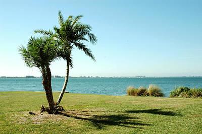 Photograph - Centennial Park In Sarasota by Carol Vanselow