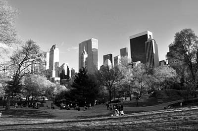 Photograph - Central Park 2 by Andrew Dinh