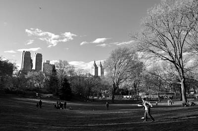 Photograph - Central Park by Andrew Dinh