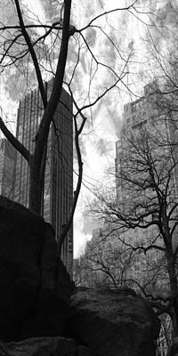 Central Park One Art Print