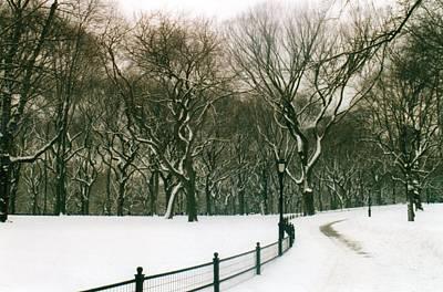 Photograph - Central Park Snow Storm by Melissa Partridge