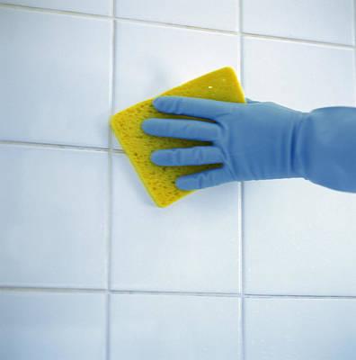 Compulsion Photograph - Ceramic Tile Cleaning by Cristina Pedrazzini
