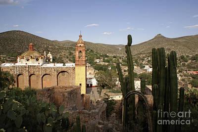 Photograph - Cerro San Pedro Cacti Mexico by John  Mitchell