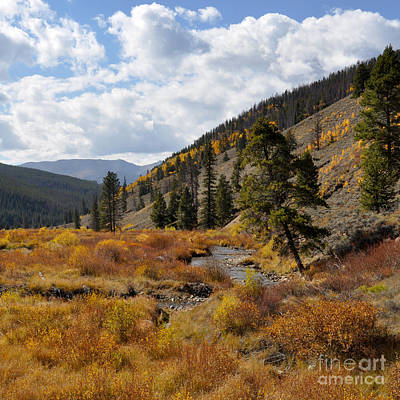 Photograph - Changing Seasons by Cheryl McClure