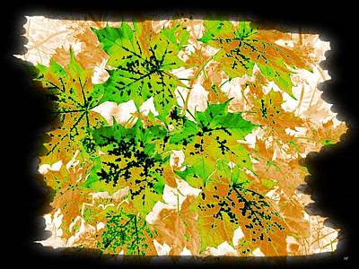 Maple Leaf Art Digital Art - Changing Seasons by Will Borden